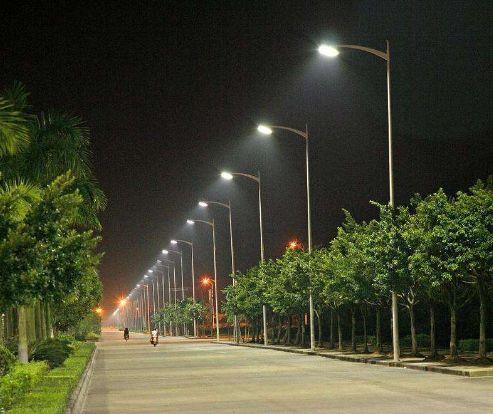 世界上第一个对蝙蝠友好的照明系统在荷兰公开亮相 瑞昌